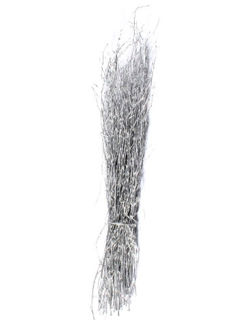 """Picture of Birch Large Painted Silver 36""""-48"""""""