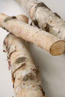 """Picture of Birch Poles 2.5 - 3.5 Dia/24"""" Long"""