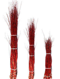 "Picture of Dogwood Dark Red Small 36""-48"""