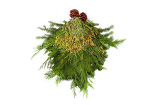 Picture of Door Swag Evergreen Bunch