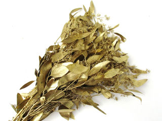 Picture of Eucalyptus Seeded Painted Gold