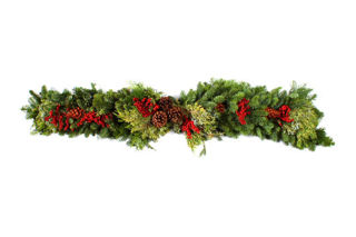 Picture of Mantlepiece Canella Berries