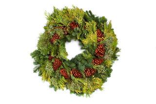 "Picture of Multicone Deluxe 24"" Wreath"