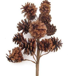 """Picture of Pine Cone Multi Cone Snow 18"""""""