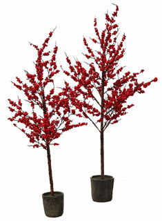 Picture of Winterberry Tree 68""