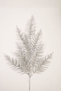 Picture of Fern Spray Silver 23""