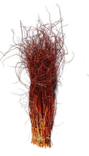"""Picture of Curly Willow Medium Copper Red 48""""-60"""""""